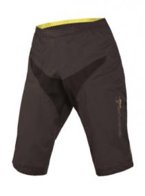 Endura MT500 Waterproof shorts